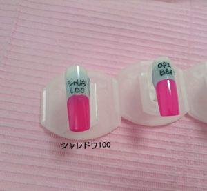 シャレドワ100&OPI B86比較